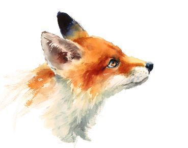 Bügelbild Fuchs Watercolor